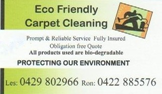 eco friendly cleaning business plan