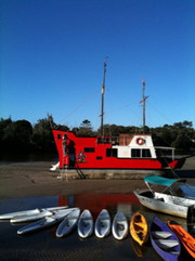 Kayak trips on the Brunswick River