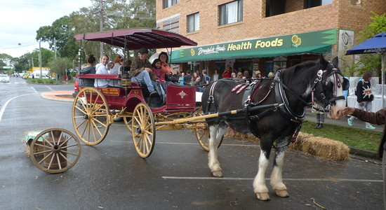 Horse & Carriage image