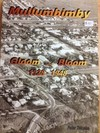 Mullumbimby Gloom and Bloom image